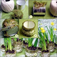 DIY Flower pots with moss...What a pretty way to reuse old cans!