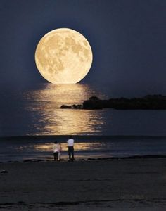 And when the moon gently touched the sea, translucent opalescent bubbles appeared that called the sea maidens to come the surface for the dance...