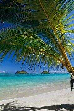 The most gorgeous beach in the world photographed by the best photographer on Lanikai, Oahu, Hawaii. Photo by Peter Lik.