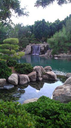 Japanese Friendship Garden, Phoenix AZ