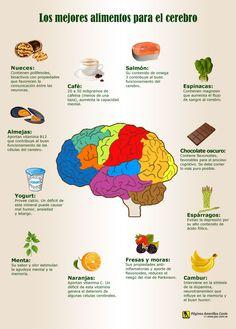 Los mejores alimentos para el cerebro son: Nueces, café, salmón, espinacas, almejas, yogurt, menta, naranjas, fresas y moras, cambur, espárragos, chocolate oscuro. En tugimnasiacerebral.com te contamos acerca de un estudio importante en el que se demostraron los beneficios del chocolate en el cerebro y la mente ¡Visita tugimnasiacerebral.com para leer más y agilizar tu mente y mejorar tu memoria!