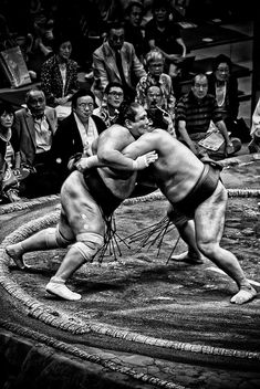 Sumo Through The Wrestlers' Eyes http://www.amazon.com/dp/B006C1I5K8