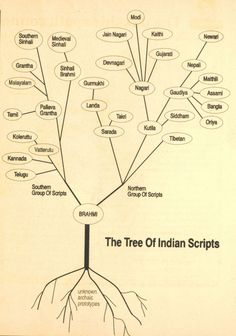 The tree of Indian scripts (Hindi taal en zuid aziatische cultuur aan de Universiteit Leiden)
