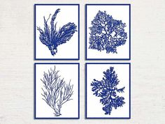 Blue Sea Coral Print Set of 4 Prints Cobalt by BeachHouseGallery, $27.00