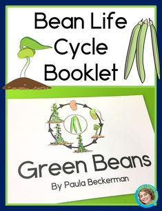 Do your children know how a dry bean grows into a thriving plant in the backyard vegetable garden?  Learn about the bean life cycle with this simple, no prep booklet.  Perfect for science learning at home or at school, it introduces vocabulary words and explains each step of the life cycle.  Couple the booklet with growing your own seeds and watching them grow for maximum learning!