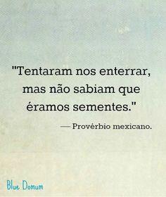 Provérbio mexicano