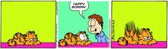 "Try to tell ""Happy Monday"" - #Garfield #cat #comic #snap #screenshot #app bestof * < ♡ ~  #blackmonday always`"