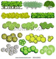 Similar Images, Stock Photos & Vectors of Trees top view for landscape vector il. Similar Images, Stock Photos & Vectors of Trees top view for landscape vector illustration – 1385 Landscape Architecture Drawing, Landscape Sketch, Architecture Graphics, Landscape Drawings, Landscape Photos, Garden Design Plans, Landscape Design Plans, Urban Landscape, Trees Top View