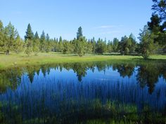 Modoc County Archives - California Outdoor Properties