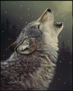 Daniel Smith Wildlife: Reproductions