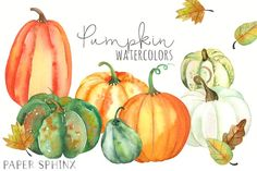 Watercolor Fall Pumpkins Pack by PaperSphinx on @creativemarket