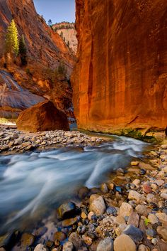 Zion National Park~The Narrows~UT