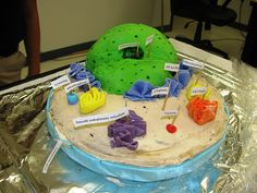 edible animal cell-cake