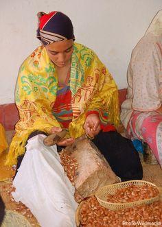 Fabrication traditionnelle de l'huile d'argane au Maroc, dans la région du Souss
