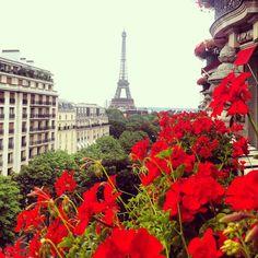 Paris Instagram Diary I (Gary Pepper)  Plaza Athenee