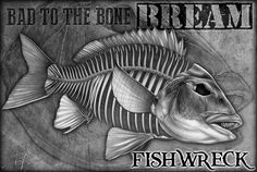 Bream…Australian gamefish skeleton for my main man Paul Shaw from Fishwreck. www.fishwreck.com.au #fishskull #fishskeleton #fishing #fishart #bream #skeleton #drawing #pencilart