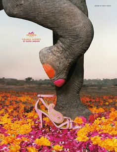 elephant + nail polish!