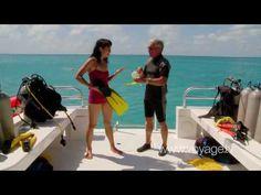 Underwater Adventure - Tucker's Point Dive, Bermuda - on Voyage.tv