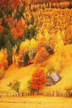 Beautiful Autumn !! ❤