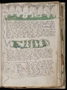 The Voynich manuscript is an illustrated codex hand-written in an unknown writing system. The vellum in the book pages has been carbon-dated to the early 15th century (1404–1438), and may have been composed in Northern Italy during the Italian Renaissance.[1][2] The manuscript is named after Wilfrid Voynich, a Polish book dealer who purchased it in 1912