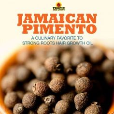 Jamaican Pimento - A Culinary Favorite To Strong Roots Hair Growth Oil | Tropic Isle Living
