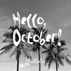 . Good-bye Summer Hello Fall . . #shellulu #october #fall #autumn #blackandwhite #BW #palm #palmtree #hello #paradise #phototakenbyme #photograph #goodbyesummer #helloautumn #モノクロ
