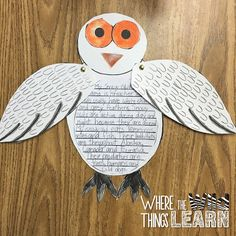 Owls and MUCH MORE -Part 2 of the Harry Potter in the Classroom Series by Where the Wild Things Learn