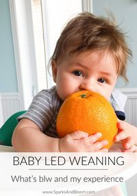 BABY LED WEANING |Wh