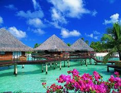 Bora Bora! We stayed in an overwater bungaloo just like these. Heaven!