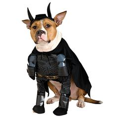 Batman Dark Knight Batman Dog Costume - Includes: Costume and headpiece. This is an officially licensed Batman ™ costume. Large.