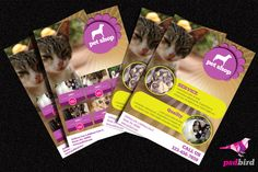 This is two different style Free Pets & Animals Shop Brochure PSD design for pet service and pet sales shop.Both of designs are image oriented design and highlighted with logos and text. You can be easy change this colour and images as you wish. Pamphlet Design, Brochure Template, Free Brochure, Pet Store, Cool Websites, Projects To Try, Free Pets, Graphic Design, Templates
