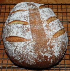 sourdough corn bread