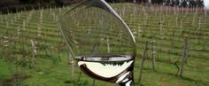 Por tierras del Txakoli. El Txakoli es quizá uno de los vinos más típicos de la zona norte de España. Con una larga tradición a sus espaldas, de hecho los primeros testimonios escritos que se han hallado demuestran que ya se producía en el siglo IX, ha sido por fin incluido en las rutas del #vino del Ministerio de Agricultura.
