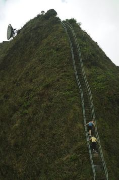 """The Baxleys: Things to do in Hawaii: """"Stairway to Heaven"""" Hike"""