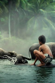 Water buffalo bath time, Bangladesh - What if this were your child? Kids Photography Boys, Amazing Photography, Image Form, Water Buffalo, Cool Tones, Tarzan, Far Away, First World, Travel Inspiration