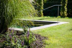 Een zwemvijver romantisch verstopt in de tuin.