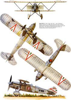 Fiat CR.32bis Unit: 1/6 vadasz-szazad 'Kor Asz' Serial: V.169 Aircraft Parts, Ww2 Aircraft, Military Aircraft, Vintage Airplanes, Nose Art, Aviation Art, World War Two, Fiat, Fighter Jets