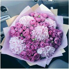 Boquette Flowers, Beautiful Bouquet Of Flowers, Luxury Flowers, Beautiful Flower Arrangements, Exotic Flowers, My Flower, Planting Flowers, Floral Arrangements, Wedding Flowers