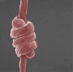 Super-stretchable yarn is made of graphene