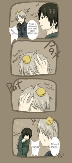 IF THEY ARE TRYING TO SHIP JAPAN AND PRUSSIA I SWEAR TO GAWD XD