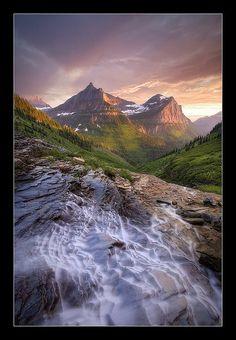Into The Valley. Glacier Nat'l Park, Montana