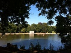 Mote Park, Maidstone. I spent many hours playing here as a child, lovely place!