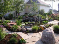Beautiful back yard.