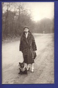 Vintage French Bulldog, 1910-1920.