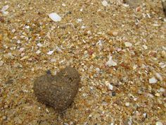 I found my heart where I lost it... on the beach