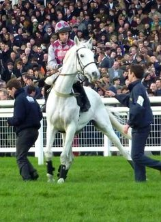 Smad Place.