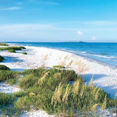 Fort De Soto Park, Tierra Verde - The 10 Best Beaches in Florida - Coastal Living