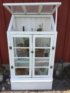 Växthus med gamla fönster som dörrar.