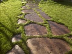 Walkway Ideas Flagstone stepping stone path inset in lawn. Rock Walkway, Stepping Stone Pathway, Walkway Ideas, Patio Ideas, Flagstone Pathway, Outdoor Walkway, Stone Walkways, Stone Paths, Driveways