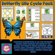 Life Cycle Pack: Butterfly by Early Childhood Resource Center Science Curriculum, Science Resources, Classroom Resources, Science Lessons, Science Activities, Teaching Resources, Teaching Ideas, Science Fun, Science Ideas